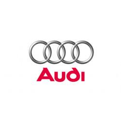 Colectii Audi