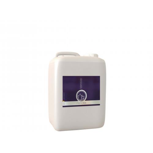 Solutie Concentrata Curatare Geamuri Nanolex Professional Glass Cleaner,5L
