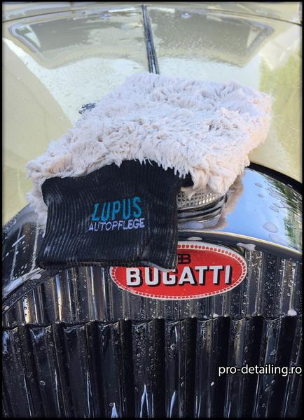 Manusa spalare auto Lupus